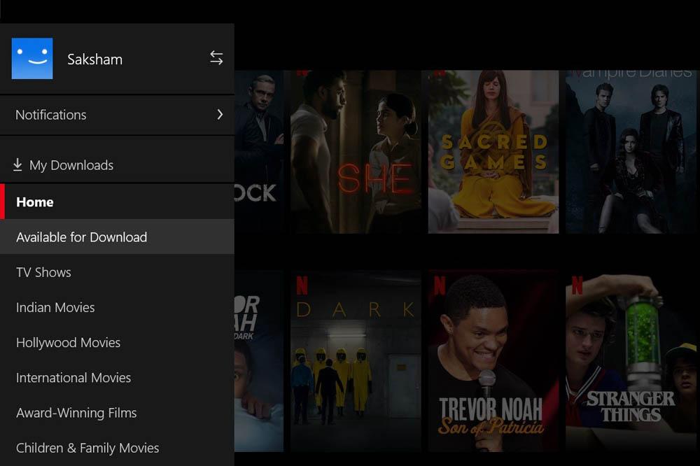 Netflix user options menu